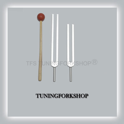 C & G Whole Body Tuning Forks