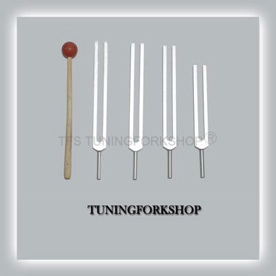 DNA Nucleotides Tuning Fork Set