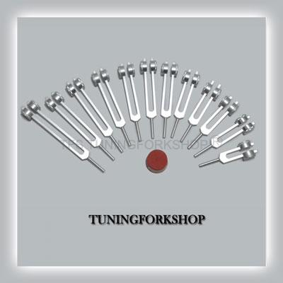 Song of the Spine Tuning Fork Set with Long Handles