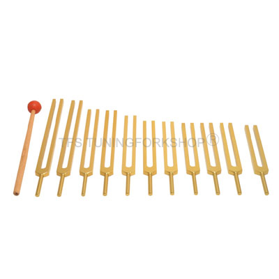 Gold Finish Cosmic Octave Planetary Tuning Forks