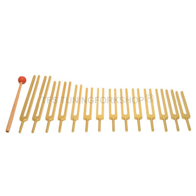 Gold Finish 14 Pc Meridian Tuning forks